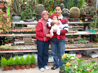 Cameron Highland 2008
