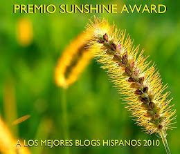 PREMIO SUNSHINE AWARD 2010 a los Mejores Blogs Hispanos.