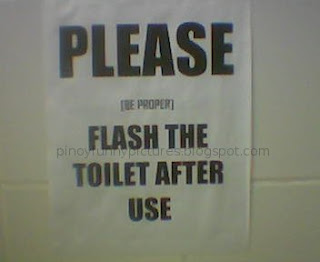 flash toilet
