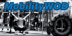 Mobility WOD Website