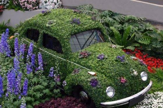 Creative cars