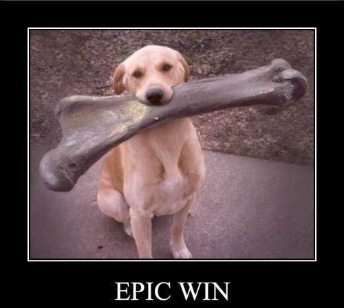 epicwin - Felicidades a nuestra ganadora @wenyanez!