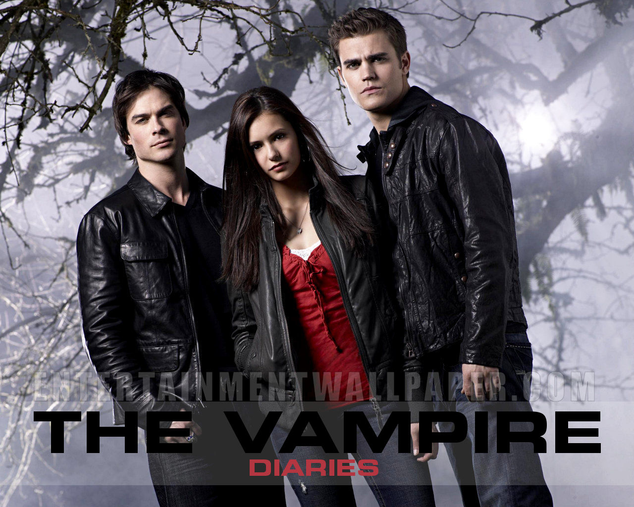 <b>The Vampire</b> Diaries Season 1 Episode 2 <b>The</b> Night of <b>the</b> Comet <b>...</b>