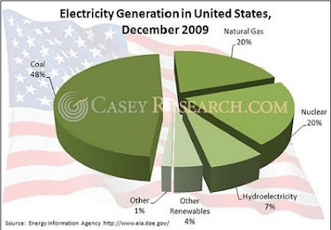 U.S. Electricity Generation Fuel Sources