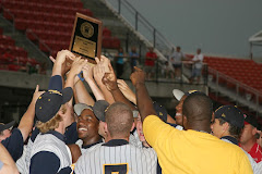 2008 NCHSAA 3-A Baseball State Champions