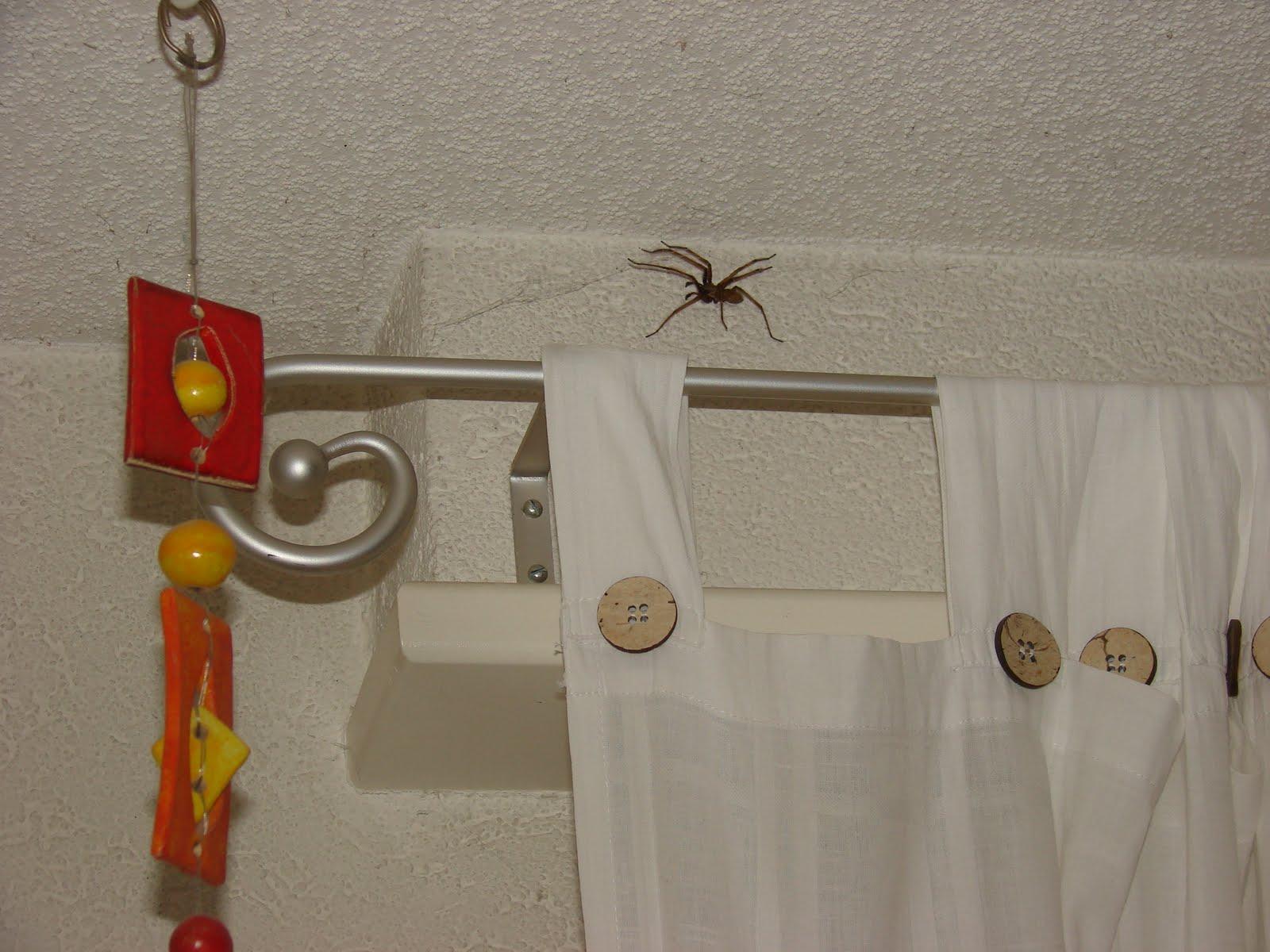 M li m lo de moi les araign es et moi - Ma fille ne veut pas dormir seule dans sa chambre ...