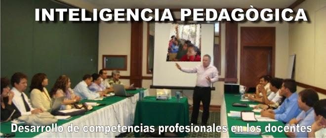 INTELIGENCIA PEDAGÓGICA: Desarrollo de competencias profesionales en los docentes