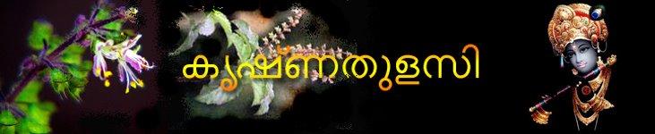 കൃഷ്ണതുളസി
