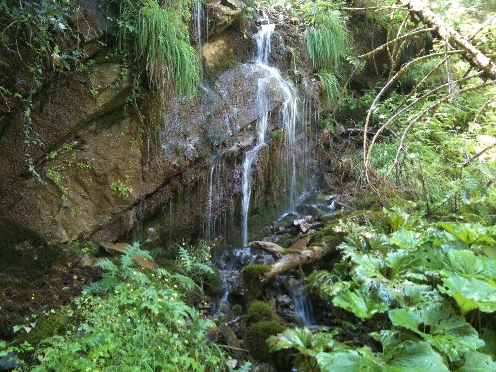 Αποτέλεσμα εικόνας για Μάνα του νερού