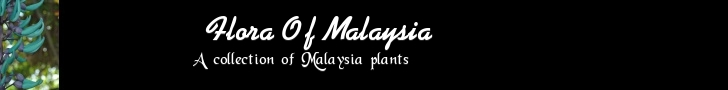 Flowers of Malaysia