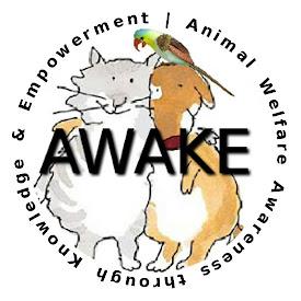 AWAKE CENTRAL