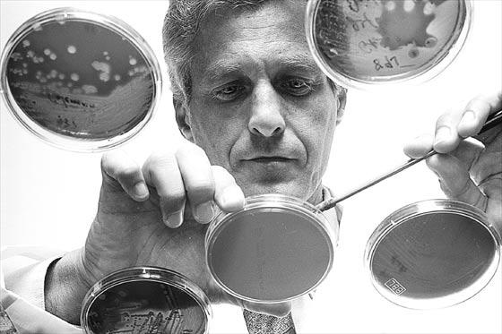 Súper bacteria podría causar serios problemas
