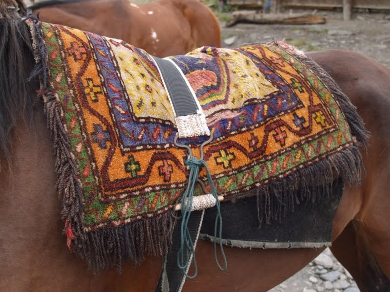 [Carpet+on+Horse]