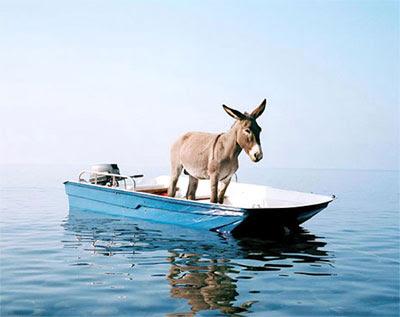 funny-donkey-in-boat 31ο Διεθνές Ναυτικό Σαλόνι Αθηνών 17-25/10/2009 - Τα πάντα για το ψάρεμα, τον ψαρά και το σκάφος | Ψάρεμα  - Συζητήσεις - Σκάφος