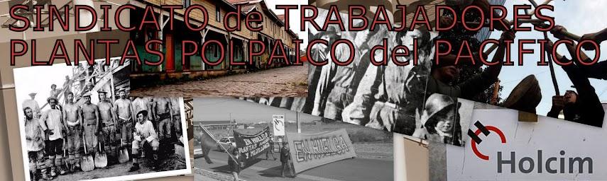 Sindicato de Trabajadores Plantas Polpaico del Pacífico