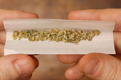 Fumar Marihuana Debilita El sistema Inmunológico.