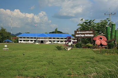 District office Phanom, Surat Thani