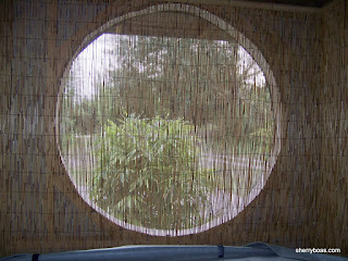 Beautiful bamboo photos of reed fencing for A different angle salon