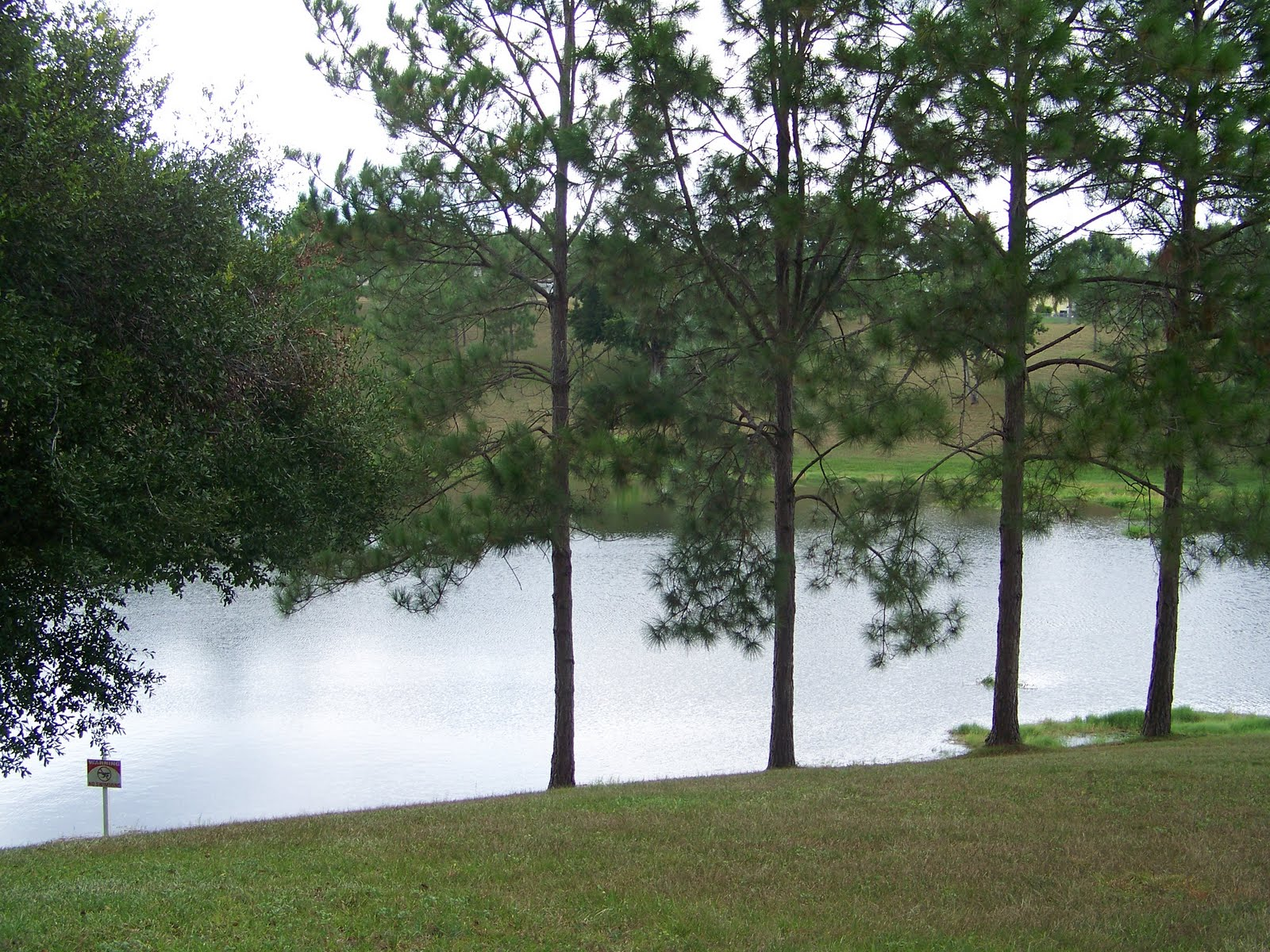 lake county florida homes for rent and sale