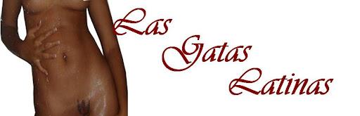 Videos  Pornos de Allison Miller / Las Gatas Latinas