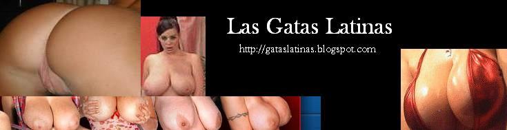 Las Gatas Latinas