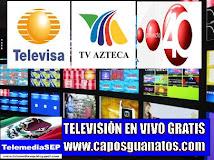 TELEVISIÓN  (TELEVISA-TV AZTECA- PROYECTO 40) GRATIS