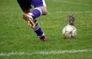 Lo mas divertido del Futbol 2009