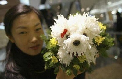 Cute Dogs made from Flowers!