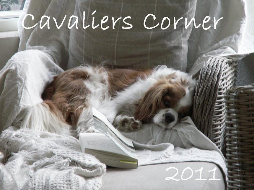 Cavaliers Corner