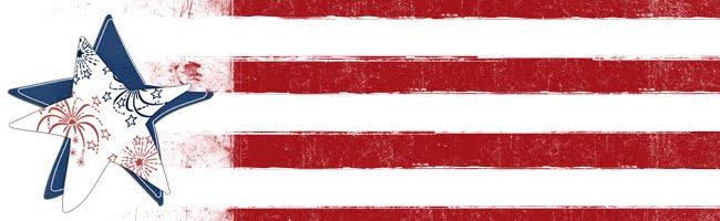 *                                           USA 2010