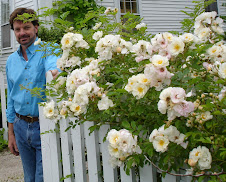Me, the plant geek, sharing the shot with my Goldfinch rose