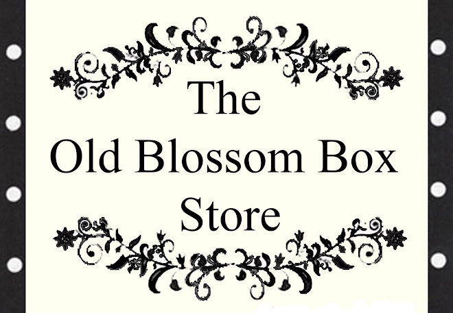The Old Blossom Box Store