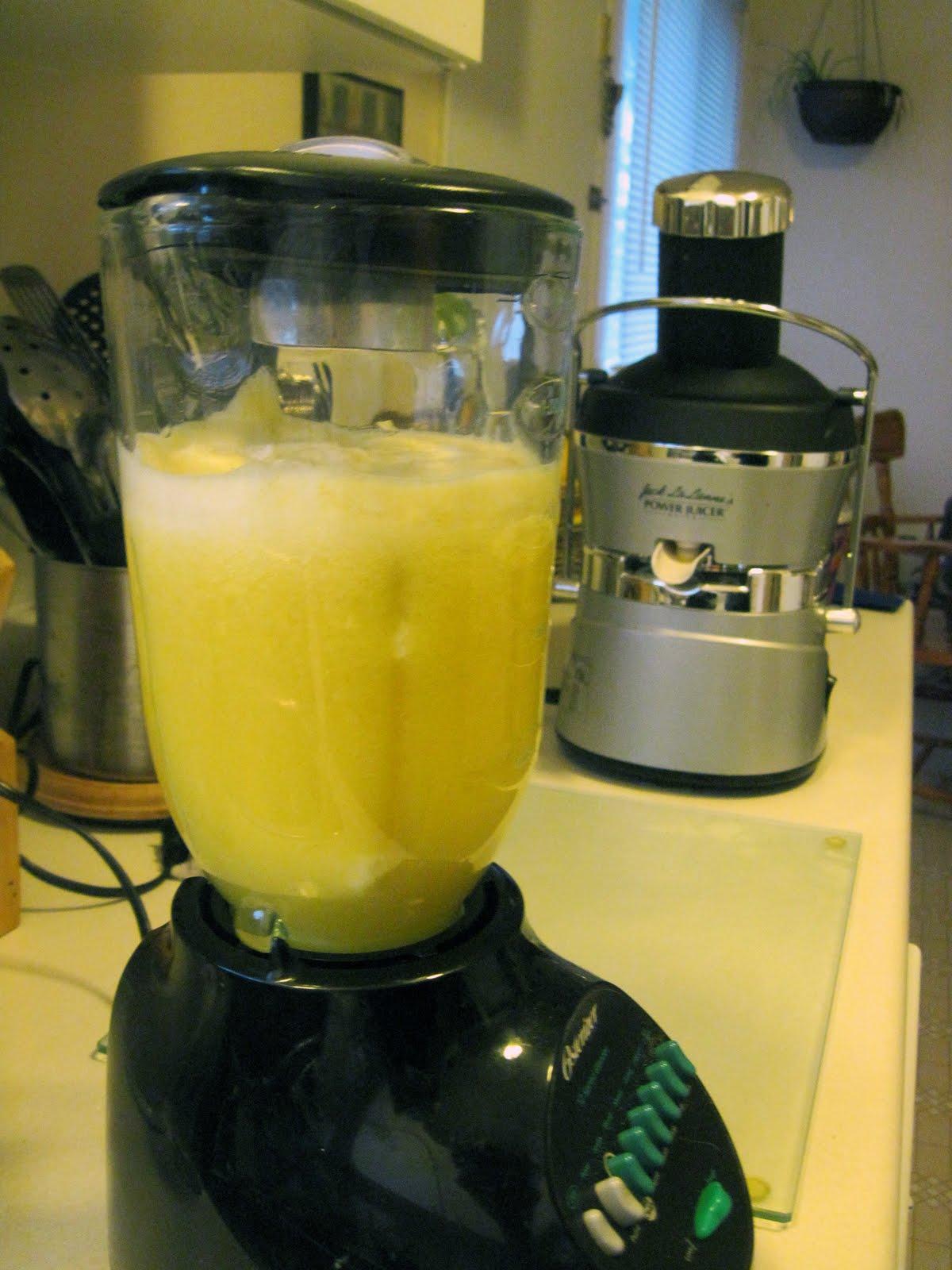 Living food junkie jack lalanne 39 s power juicer elite for Alpine cuisine power juicer