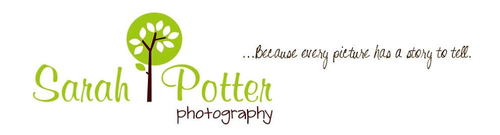 Sarah Potter Photography