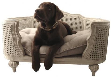 Stijl 3 hondenmand de luxe for Mobilier contemporain luxe