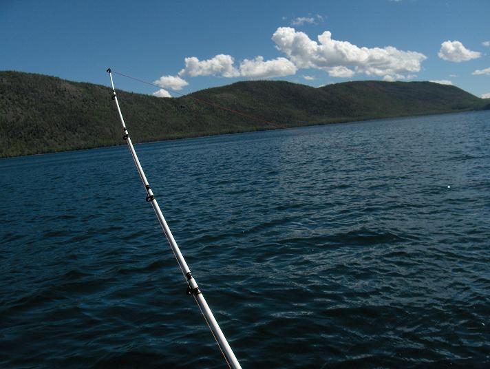 The creekside angler fish lake utah for Fish lake utah