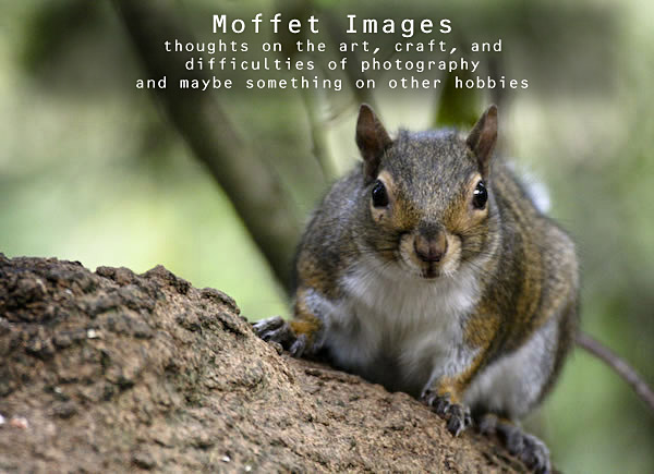 Moffet Images