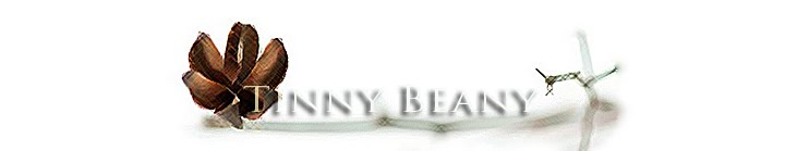 Tinny Beany