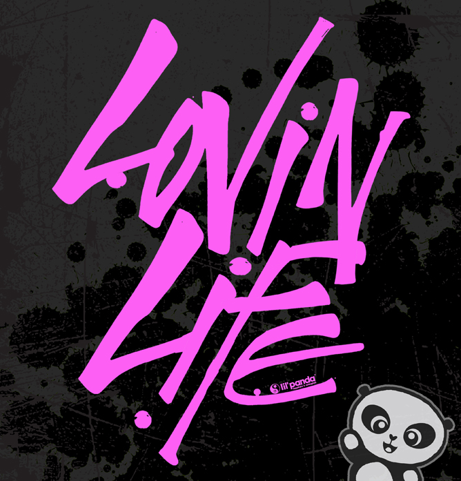 lil'panda blog: January 2011