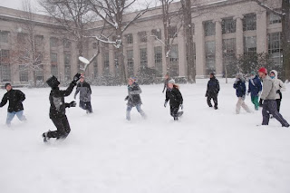 snowltimate