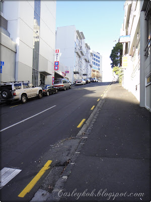 Super steep road in Auckland