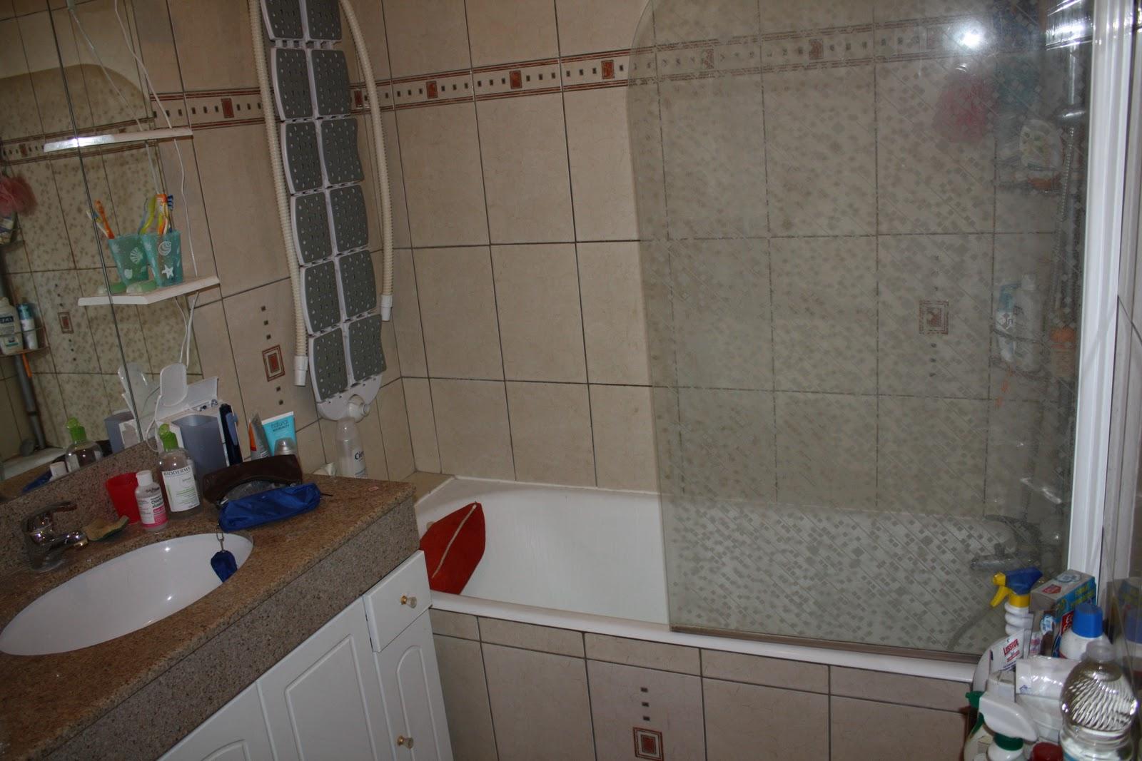 Appartement 5 pieces a ris orangis 91130 salle de bain for Salle de bain 4 m2