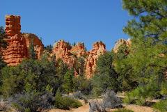 Entering Bryce Canyon, Utah