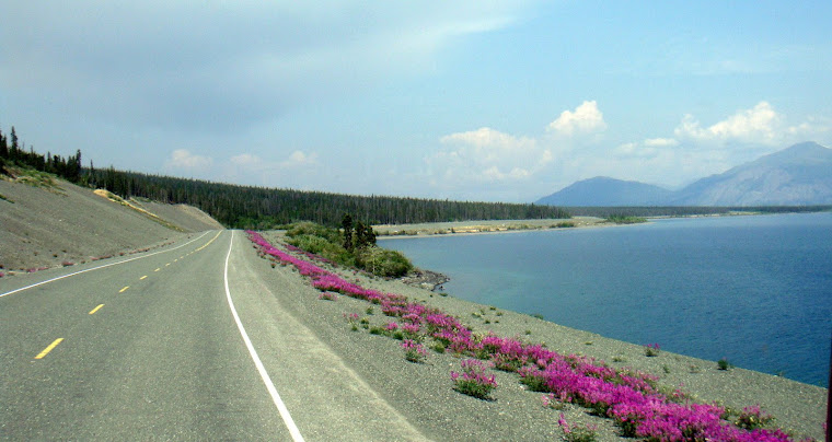 Beautiful Scenery on Way to Beaver Creek