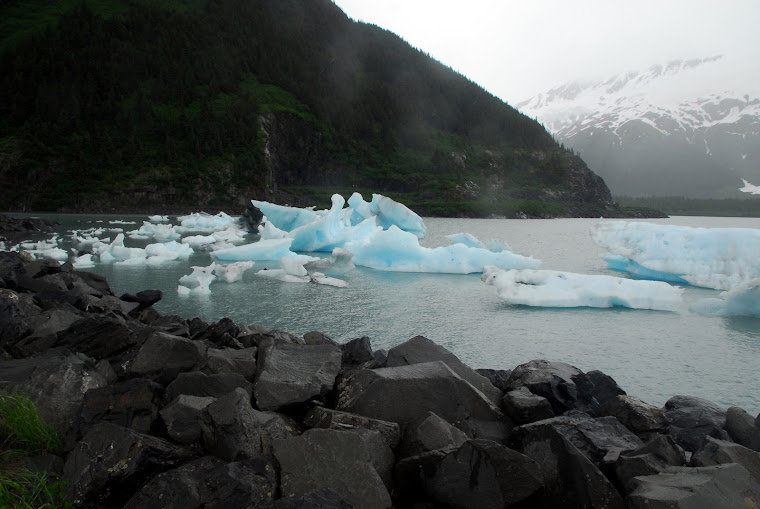 Icebergs Outside of Whittier, Alaska