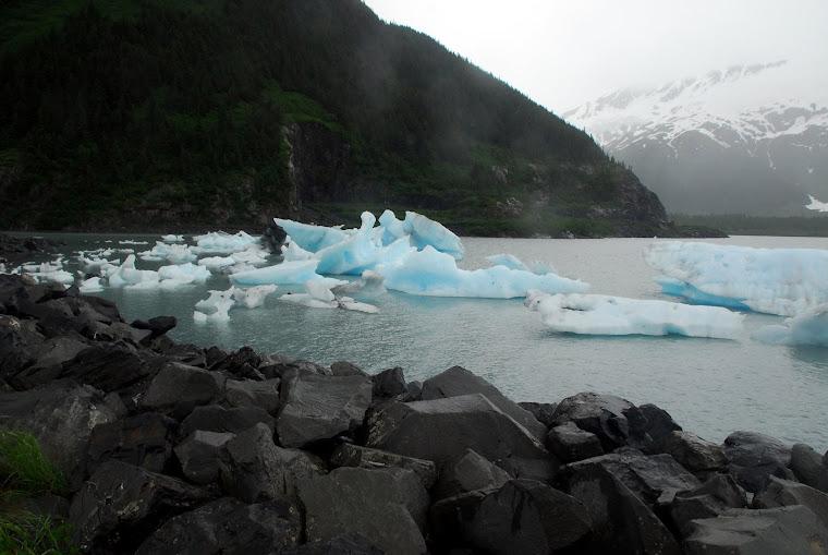 Icebergs Outside of Whittier, Alaska