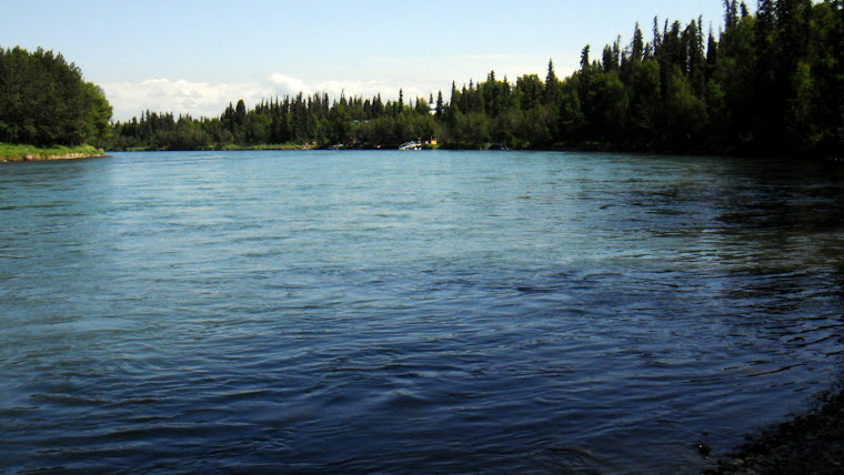 Kenai River in Soldotna at the Edgewater RV Park
