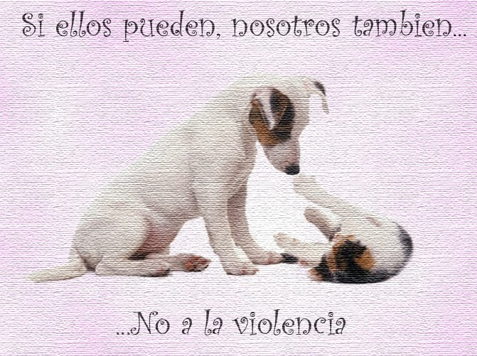 Di no a la violencia