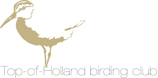 Alles over vogelen en vogels in de Top-of-Holland