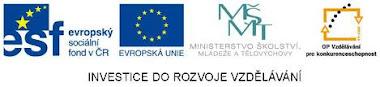 Podpora Evropského sociálního fondu